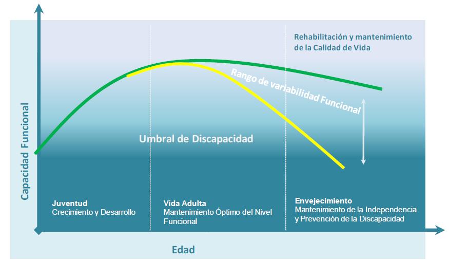 Mantenimiento de la capacidad funcional a lo largo de la vida
