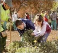 plantando-en-el-parque1, del blog de Roser Batlle